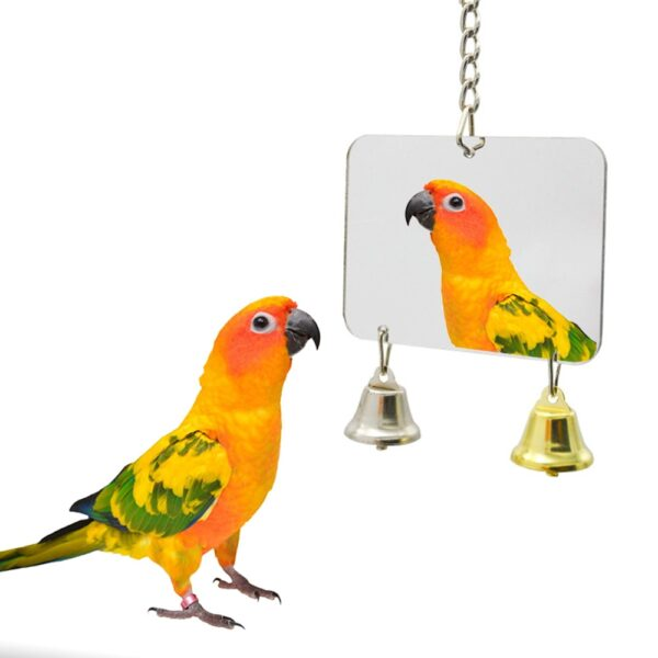 8 style Pet Toy Mirror Fun Toy For Cockatiel Parrots Small Birds Parrot Toys Pet Parrots Climb Accessories New
