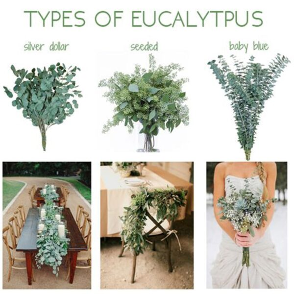 Artificial Eucalyptus Vine Green Leaves Wedding Decoration Fake Flowers Branch Plants Flower Garland Party home house Decor