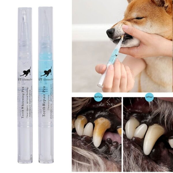 111-Pet Teeth Cleaning Kit Pet Beauty Toothbrush Dog Cat Tartar Dental Stone Cleaning Pen 3ml